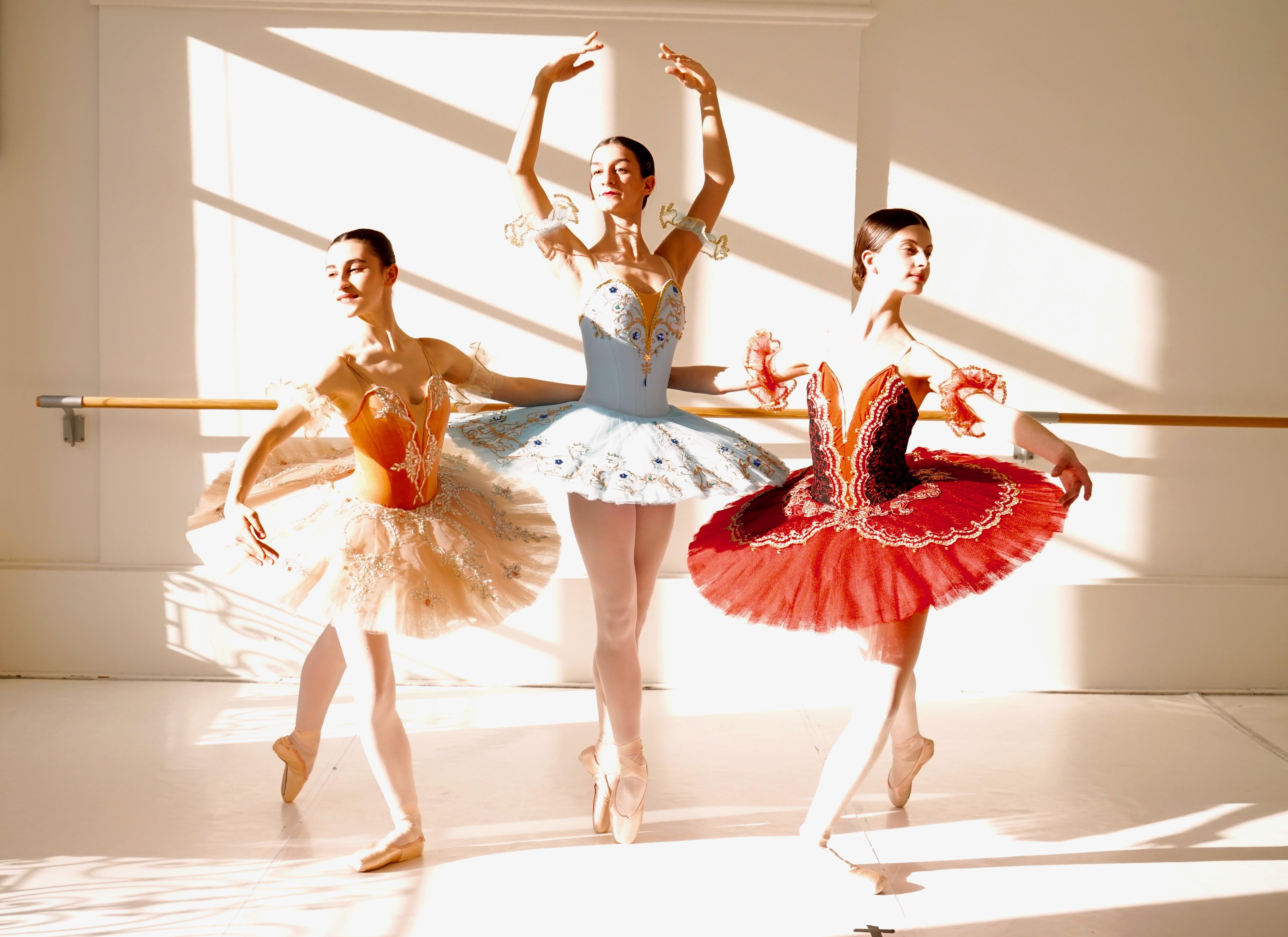danse classique lyon cours de danse formation cycle ballet
