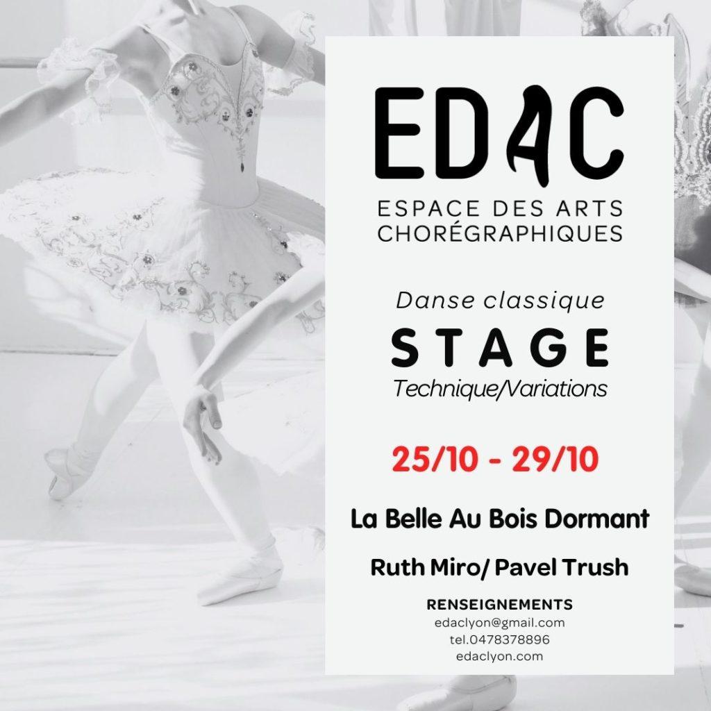 Stage de danse classique à Lyon Région ARA La belle au bois dormant Opéra de Paris Opéra de Lyon Maison de la danse école de danse à Lyon variation danse-études ballet